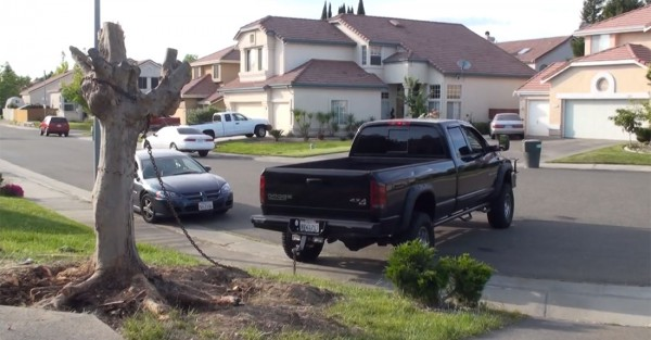 4x4-dodge-cummins-diesel-truck-vs-tree-