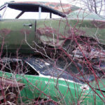 1969_Dodge_Charger_Rallye_green_junkyard