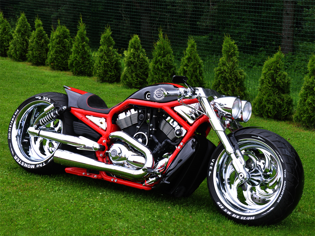custom-harley-davidson-supercharged-v-rod-by-fredy-1